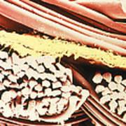 False-colour Sem Of The Fabric Gore-tex Poster