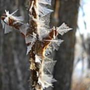 Fancy Fractal Frost Crystals Poster