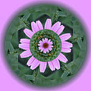Fantasy Flower Poster by Linda Pope