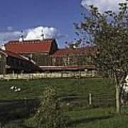 Farm Scene With Barn  Poster