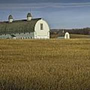 Farm Scene With White Barn Poster