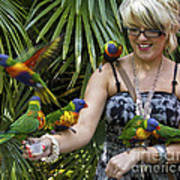 Feeding Rainbow Lorikeets Poster