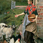 Feeding The Chickens Poster