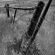 Fence Posts And Barbed Wire At The Edge Of A Field In Montana Poster