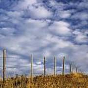 Fenceline In Pasture With Cumulus Poster by Darwin Wiggett