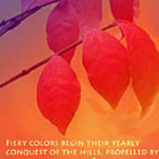 Fiery Colors Poster