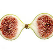 Fig In Half Poster