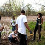 First Lady Michelle Obama Helps Plant Poster by Everett