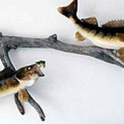 Fish Mount Set 06 A Poster