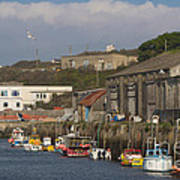 Fishing Boats Hayle Harbour Poster