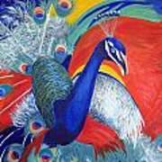 Flamboyant Peacock Poster
