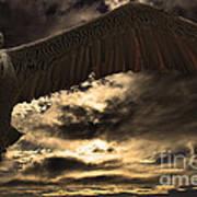 Flight Of The Brown Pelican Poster