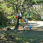 Float Tree Poster