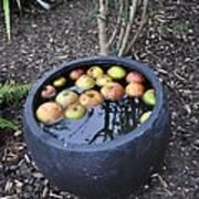 Floating Apples Poster