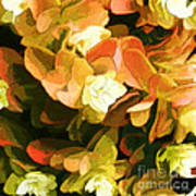 Floral Print Poster