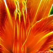 Flower - Orange - Abstract Poster