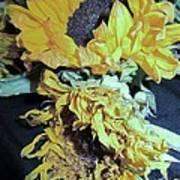 Flower-27 Poster