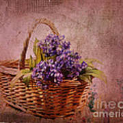 Flower Basket Poster by Judi Bagwell