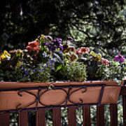 Flower Box Poster