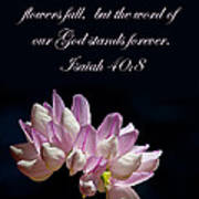 Flower Macro And Isaiah 40 8 Poster