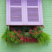 Flower Pot Window Poster