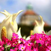 Flowers - Botanical Garden Munich Poster
