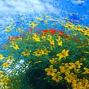 Flowery Sky Poster