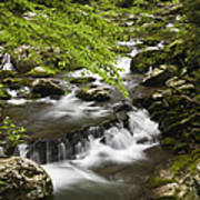 Flowing Mountain Stream Poster