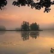 Foggy Summer Sunrise At Harvard Pond Poster
