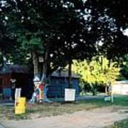 Folk Art Yard And Tree Poster