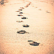 Footprints In Sand Poster by Paul Velgos