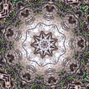 Forest Mandala 4 Poster