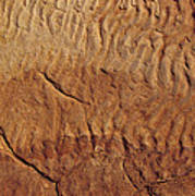 Fossilised Water Ripples In Sandstone Poster