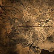 Fossilite Poster