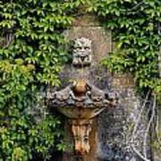 Fountain In The Walled Garden, Florence Poster
