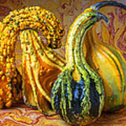 Four Gourds Poster