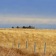 Four Outbuildings In The Field Poster