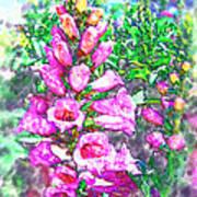 Foxglove Floral Poster