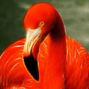 Fractalius Flamingo Poster