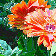 Fractured Gerber Daisies Poster