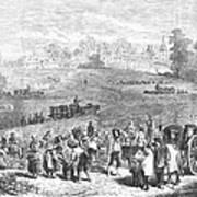 France: Wine Harvest, 1871 Poster