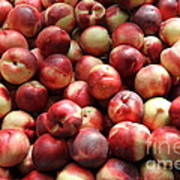 Fresh Nectarines - 5d17813 Poster