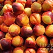Fresh Nectarines - 5d17815 Poster