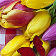 Fresh Tulips And Red Butterfly Poster