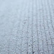 Frosted Woodgrain Poster