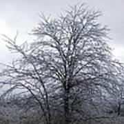 Frozen Landscape 4 Poster