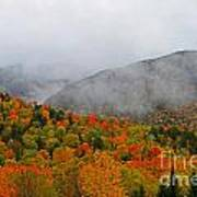 Fruits Loops In Crawford Notch Poster