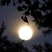 Full Moon Late Night Spain  Poster