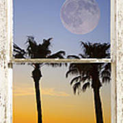 Full Moon Palm Tree Picture Window Sunset Poster