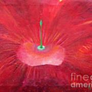 Full Red Flower Poster